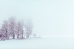 Lake på vintern Royaltyfri Foto