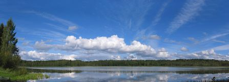 Lake Panorama. Panoramic view of a lake in bright summer cloudy day Royalty Free Stock Image