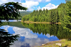 The lake panorama. Stock Image