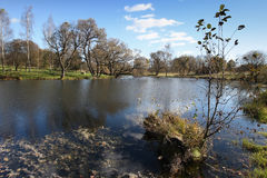 Lake panorama, with fodrest and blue sky.  Stock Image