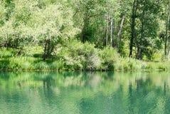 Lake in park stock image