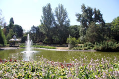 Lake in the park Royalty Free Stock Photography