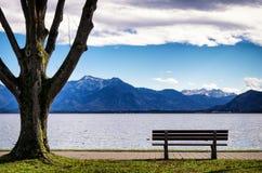 At the lake Stock Photo