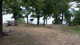 Lake park bench view. Water trees picnic bench at park lake Royalty Free Stock Image