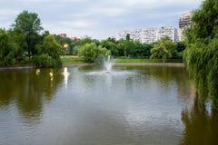 Lake park Royalty Free Stock Photography