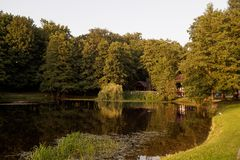 Lake in a park in autumn at sunset royalty free stock photo