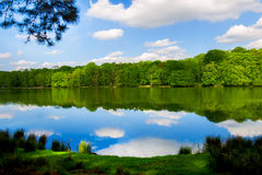 Lake in the Park with Forest on the other shore, Clear blue sky and Fluffy White Clouds Royalty Free Stock Photos