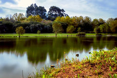Lake Park HDR. Beautiful view of a serene lake park - HDR royalty free stock photo