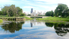 The Lake in the Park. The Lake in Lincoln Park, Chicago Stock Photo