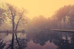 Lake in park in the misty morning Stock Image
