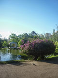 Lake at Park in Montevideo Royalty Free Stock Photo