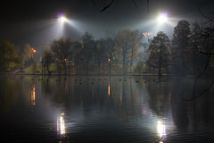 Lake park by night Stock Images