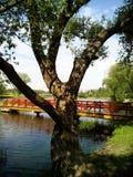 On the lake. Park of polish Manor Pan. On the lake Stock Photos