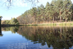 Lake in the park. Reflection of trees in water Royalty Free Stock Photography
