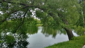Lake in a Park in the Russian country estate. Lake in a Park in an old Russian manor Royalty Free Stock Photos