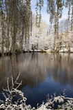 Lake in park with snow Stock Image