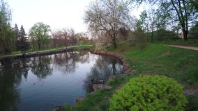 Lake in park spring. Steadicam pans camera on lake in park stock footage