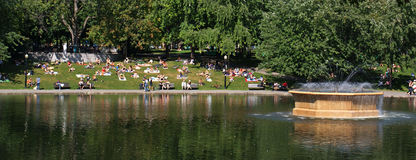 Lake and park in summer Royalty Free Stock Photos