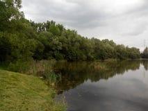 Lake. Park, lake, trees, water, mirror royalty free stock image