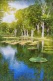 Lake in park with Victoria amazonica, Victoria regia. Mauritius Stock Image