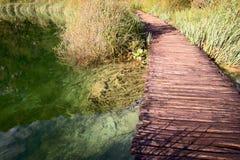Lake path Royalty Free Stock Image