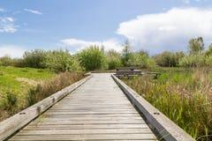 Lake path. Royalty Free Stock Photo
