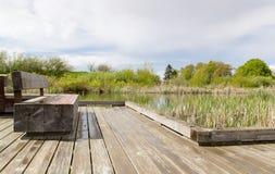 Lake path. Royalty Free Stock Images