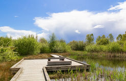 Lake path. Royalty Free Stock Photos