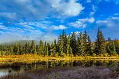 Lake Patricia. Wonderful autumn landscape. Lake Patricia is surrounded by a spruce evergreen forest. Rocky Mountains of Canada. The concept of active, ecological royalty free stock photography