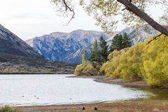 Lake Pearson Arthur's pass National Park, New Zealand Stock Images
