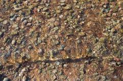 Lake pebble closeup. Calmly water Royalty Free Stock Images