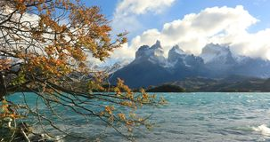 Lake Pehoe at dawn. Torres del Paine, Chile stock video