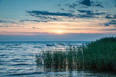 Lake Peipus at sunrise Stock Images