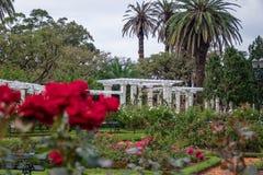Lake Pergola at El Rosedal Rose Park at Bosques de Palermo - Buenos Aires, Argentina stock image