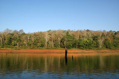 Lake, Periyar National Park, Kerala, India Stock Photo
