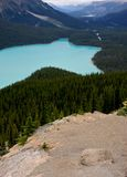 Lake Peyto Royalty Free Stock Photo