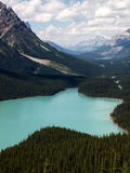 Lake Peyto Canada Royalty Free Stock Photos