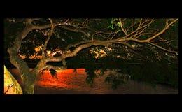 Lake sri lanka Stock Photography