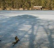Lake Piburgersee Frozen, Austria Royalty Free Stock Photo