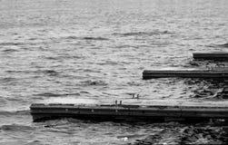 Lake pier royalty free stock images