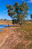 Lake Pinaroo Stock Images
