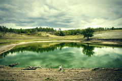 Lake in a pine forest in cloudy weather Stock Images