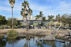 Lake Pit at the La Brea Tar Pits. LOS ANGELES - NOVEMBER 24, 2017: Lake Pit at the La Brea Tar Pits.  Pleistocene mammoth statues depict how animals became Stock Images