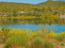 Lake Pleasant Reflection Royalty Free Stock Photos