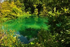 Beautiful green lake at Plitvice lakes Royalty Free Stock Images