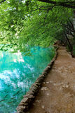 Lake of Plitvice magical ride, Croatia Stock Photos