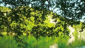 Lake in Plitvice National Park, Croatia stock video