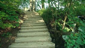 Lake in Plitvice National Park, Croatia stock video footage