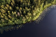Free Lake Podnieku In Summer Evening, Captured From Above Stock Image - 215487311