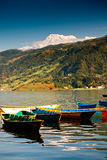 Lake in Pokhara Stock Images